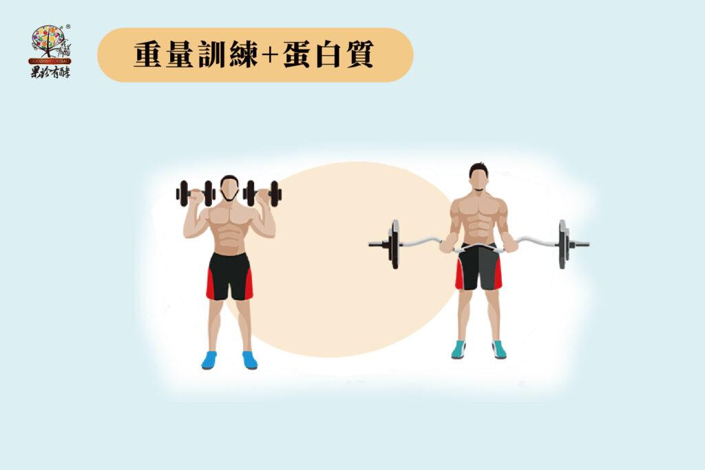 重量訓練+蛋白質