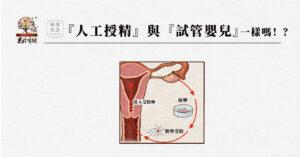 『人工生殖』包含『人工授精』與『試管嬰兒』