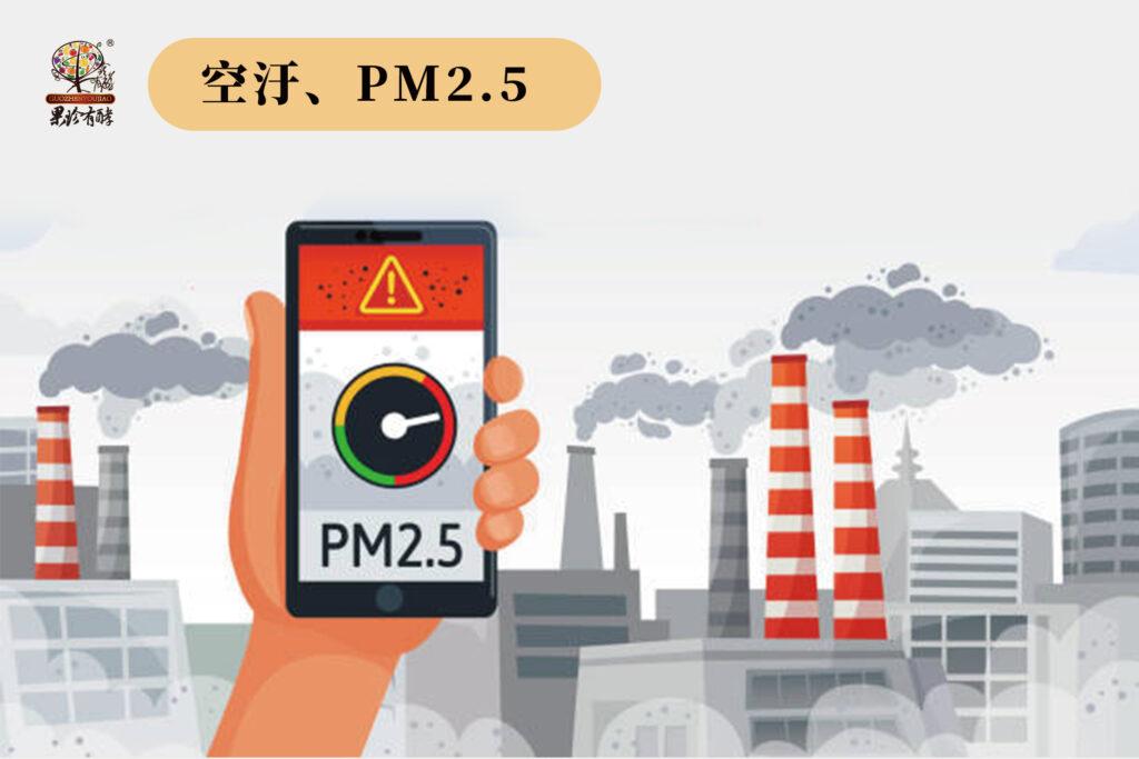 空氣污染、PM2.5