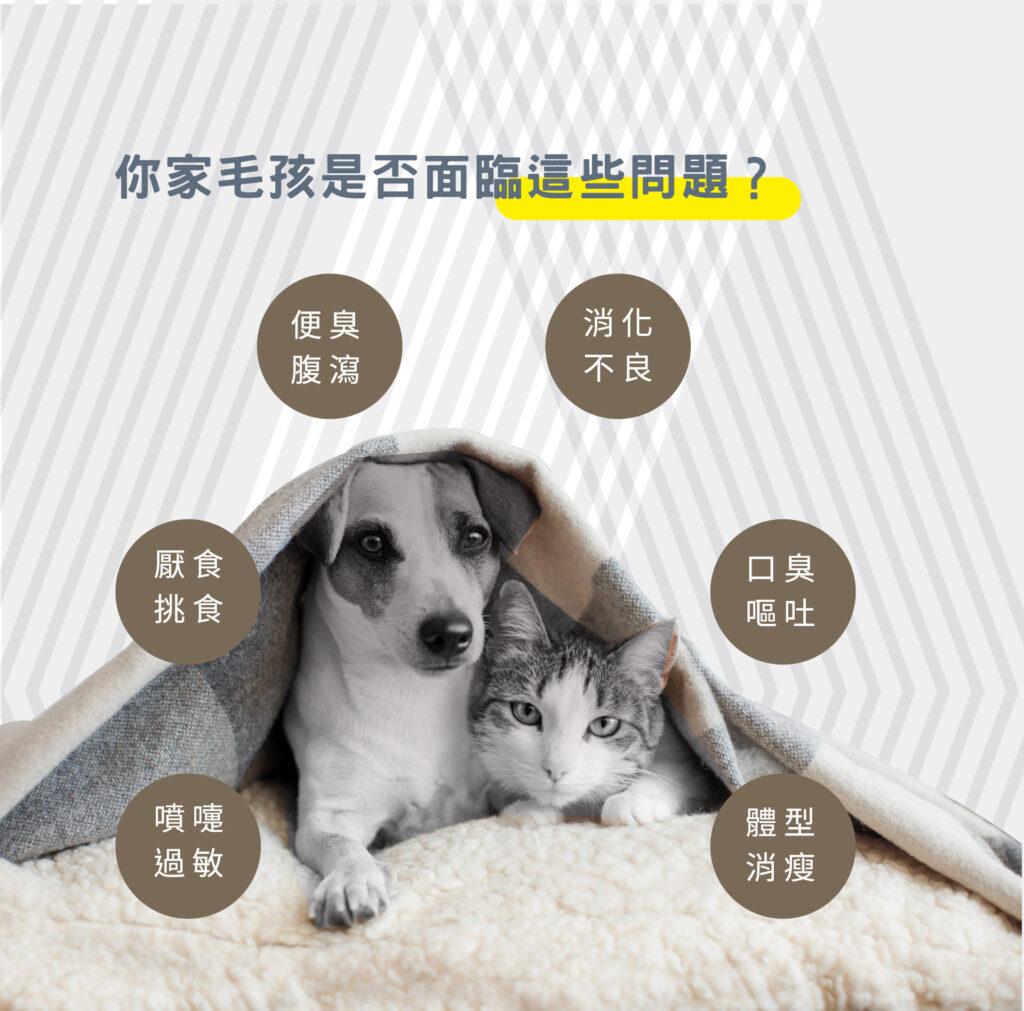 犬喵益生菌_5