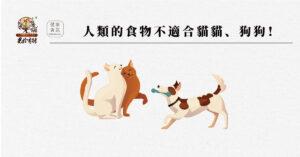 人類食物不適合貓狗